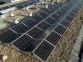 Huurders krijgen zonnestroom via Herman