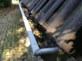 Herfstinspectie dakgoot en regenpijp