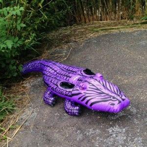 paarse_krokodil